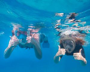 Comparatif des meilleurs masques de plongée
